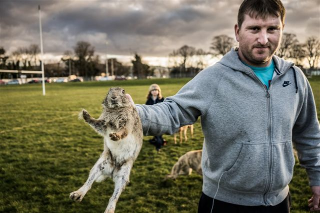 P Young Greyhound Trainer Trainers convicted of ...