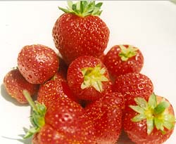 strawberries1.jpg