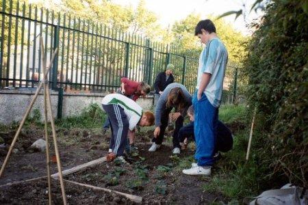 Lara helps the lads plant some veg