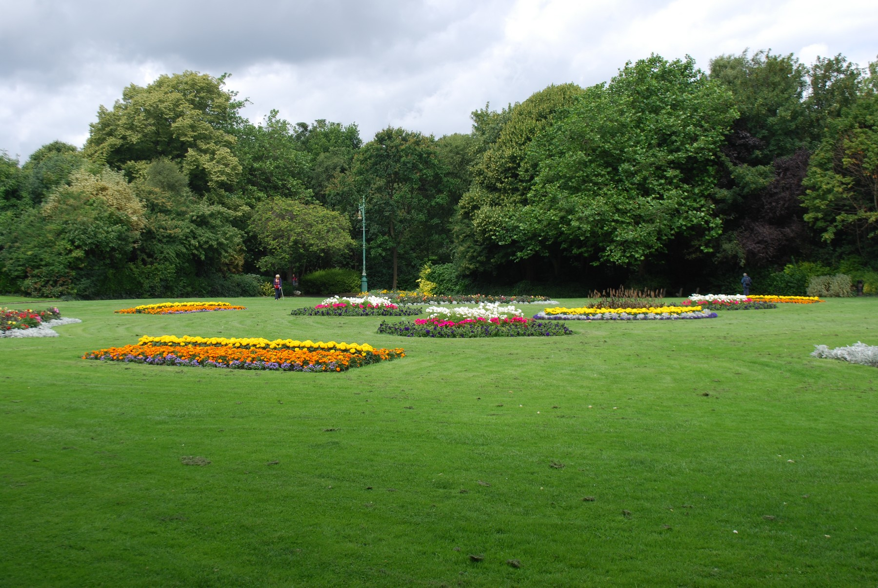 Dublin City Council Plans To Chop Down 300 Trees In Merrion Square