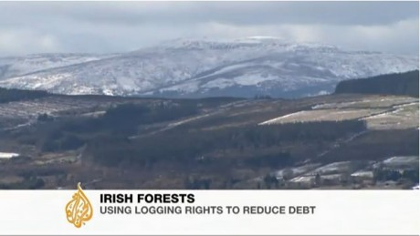 aljazeera_video_selloff_of_irelands_forests_pic2.jpg