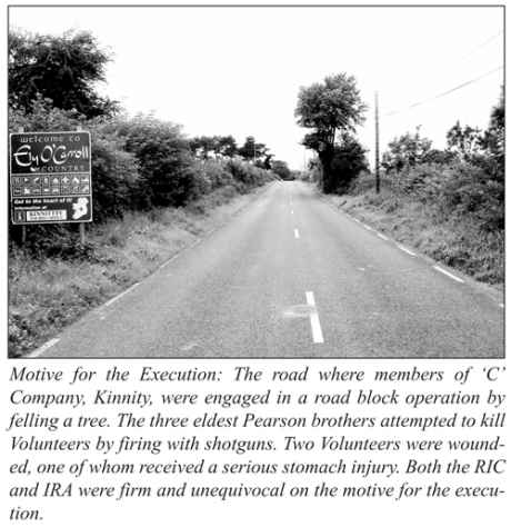 The public roadway beside their land, where the Pearsons attacked an IRA tree-felling party
