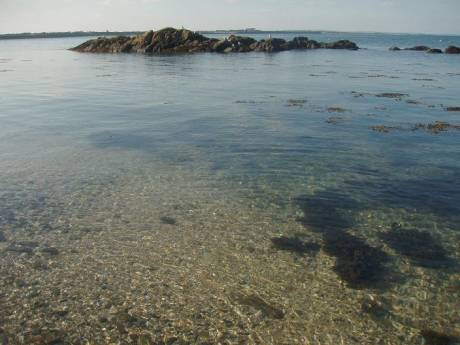 The unpolluted crystal clear waters of Bremore 20-9-08