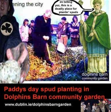 Paddys day spud planting in Dolphins Barn community garden