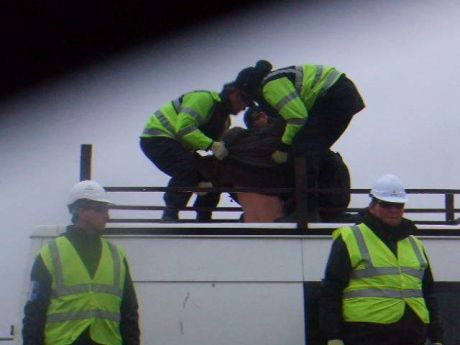 Gardaí removing protestor from the roof of his own van