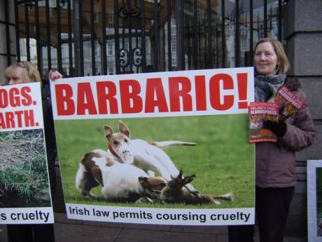 Protest against shameful exemption of Hare coursing and Fox hunting from prohibition under new
