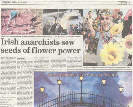 irish anarchists sow seeds of flower power