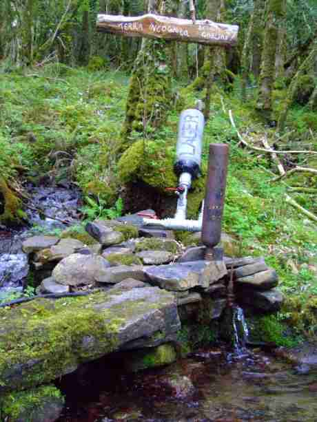 Ram Pump at the stream, using the water's own energy to pump it where you want it. New model ready behind current one.