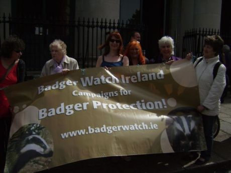 BadgerWatch Ireland banner with Clare Daly, Maureen O' Sullivan, Bernie Wright and Bernadette Barrett (Badgerwatch)