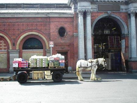 eco transport @ dublin fruit market ?